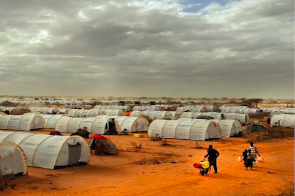 Socio-economic rights of refugees in African countries – a new study